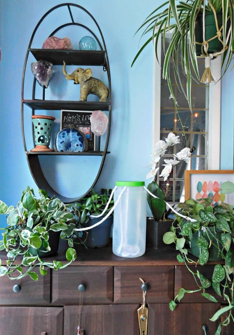 jug of water with string wicking water to house plants