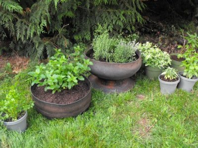 How to Make Inside Out Tire Planters