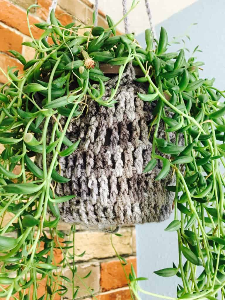 crochet plant hanger close up with leaves hanging down