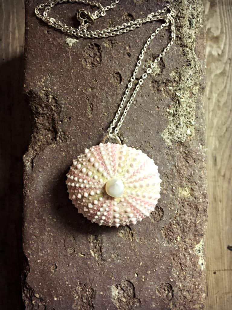 sea urchin necklace