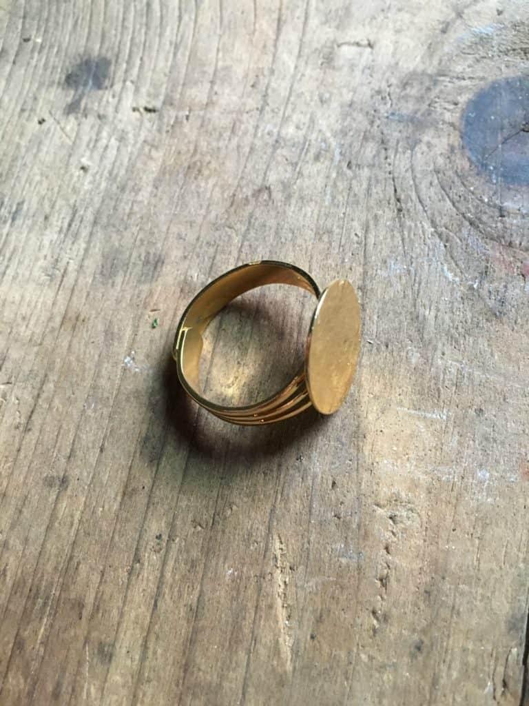 succulent ring 3