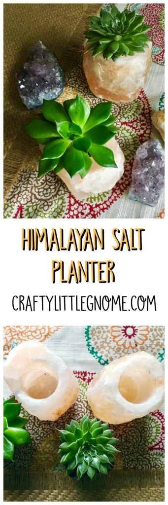 pin-image-salt-planter