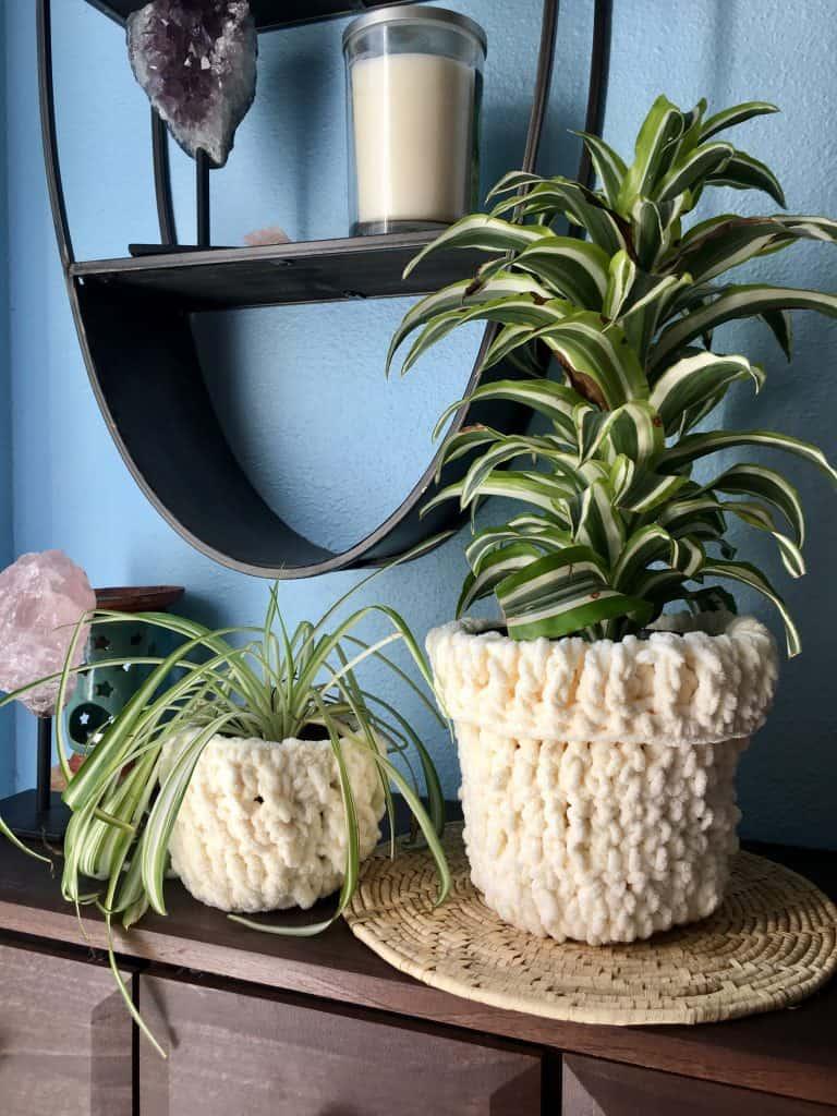 crochet plant cozies