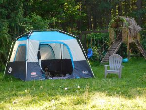 tent camping in the backyard