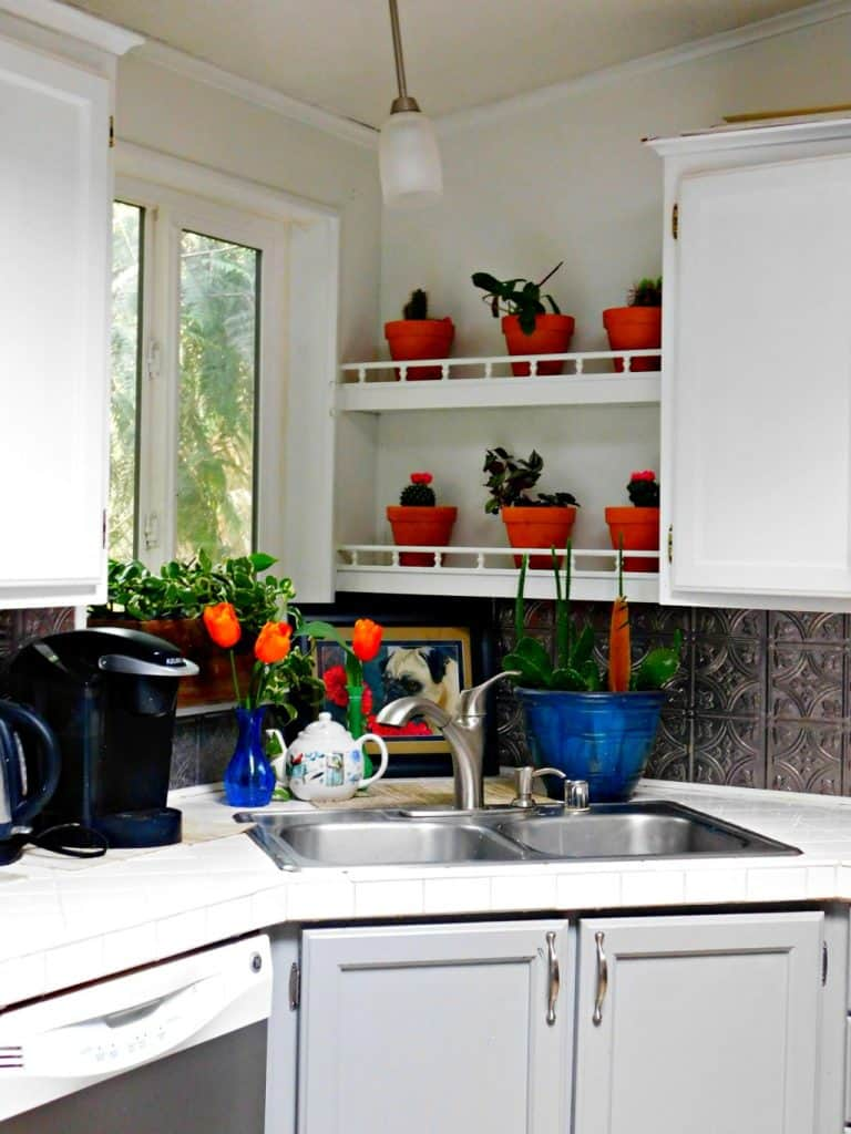 farmhouse kitchen with sink and potted plants