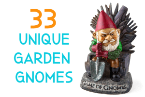 33 unique garden gnomes