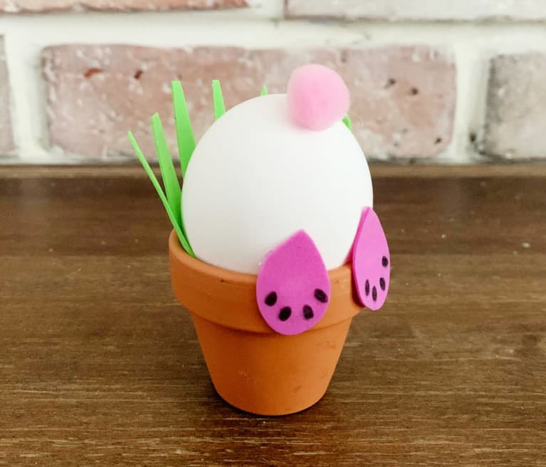 bunny place holder with boiled egg