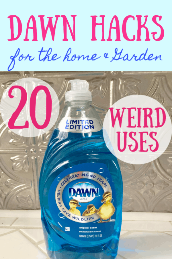 alternative uses for dawn dish soap graphic