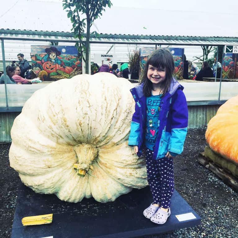 child standing next to giant white pumpkin