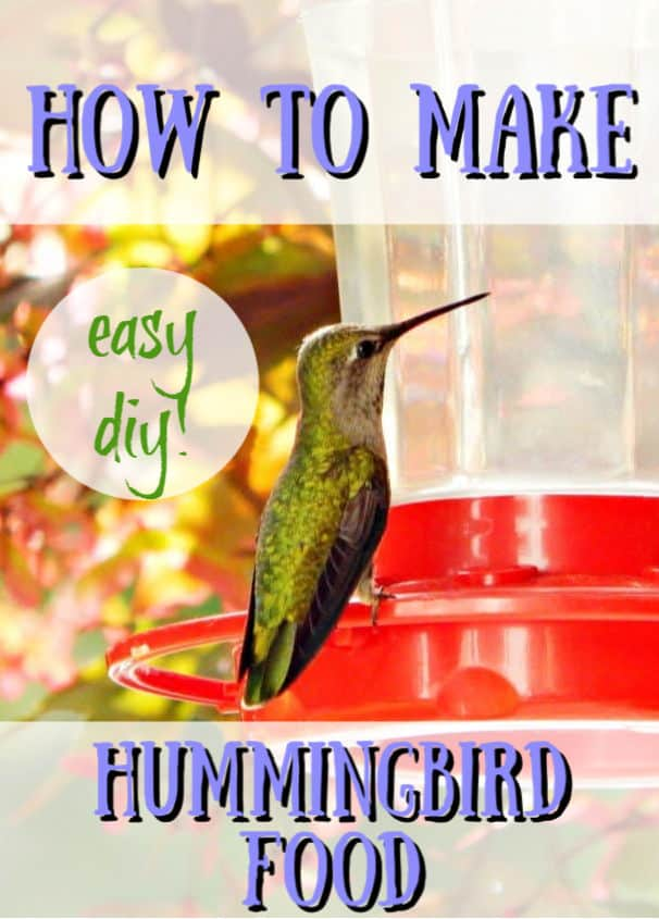How To Make Hummingbird Nectar Diy Don T Buy Crafty Little Gnome