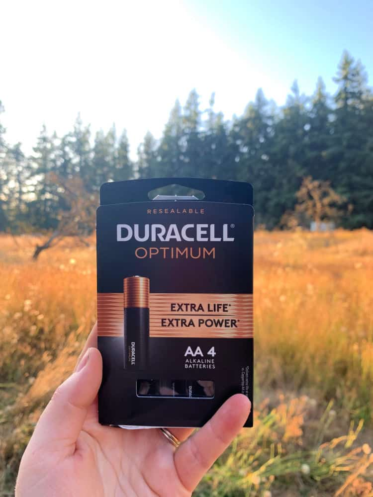 close up of hand holding duracell batteries