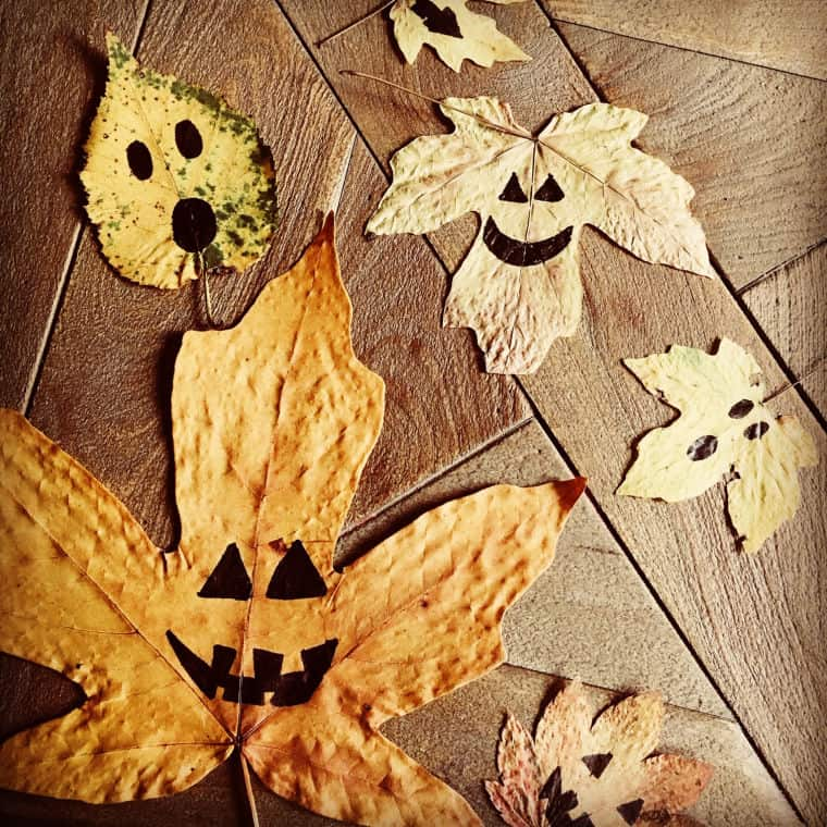 pumpkin leaves dried leaf art