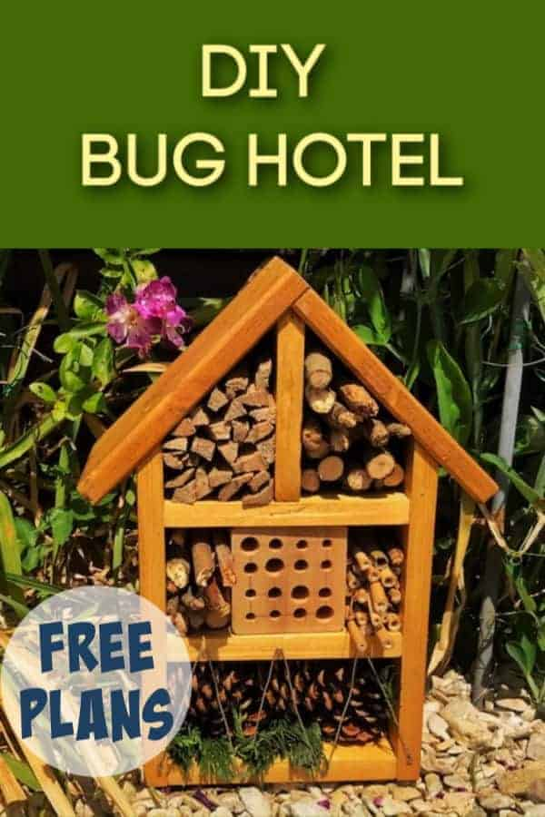 How To Build A Diy Bug Hotel Crafty Little Gnome