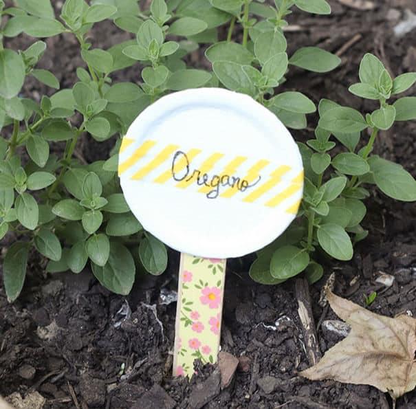 herb garden marker in the garden