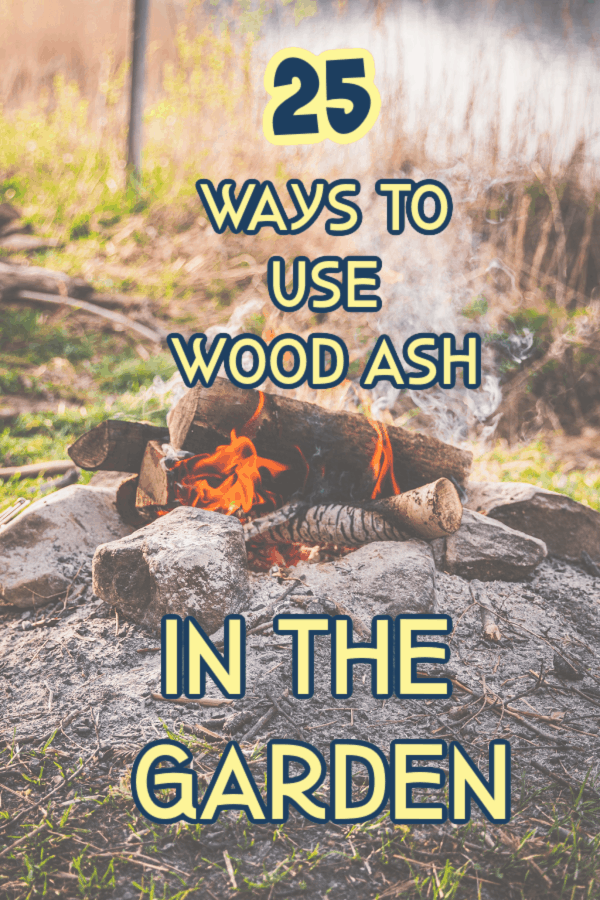 ways to use wood ash in the garden graphic