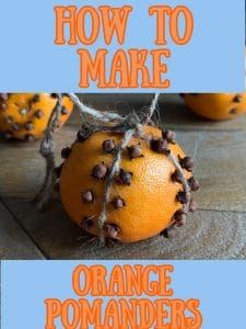 orange pomander pin image