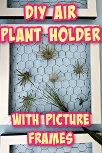 picture frame plant holder